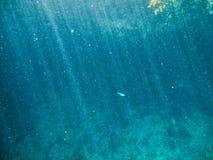 Podwodny fotografia stock