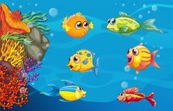 podwodny Obraz Royalty Free