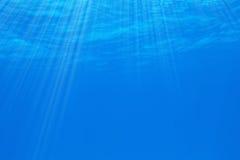 podwodny Obraz Stock
