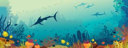Podwodny morski życie - rafa koralowa i marlin łowimy ilustracja wektor