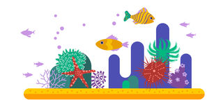 Podwodny tło z tropikalną ryba i różnorodną rośliną Zdjęcie Royalty Free