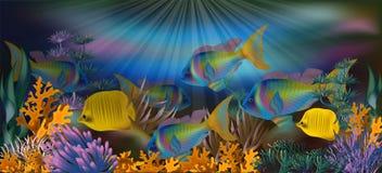Podwodny tło z tropikalną ryba, wektor Zdjęcia Stock