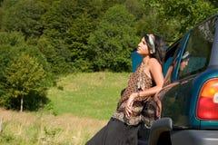 podział samochód Zdjęcia Royalty Free