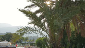 Podzwrotnikowy klimat deptak morzem zdjęcie wideo