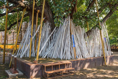 Poe tradition crutches,chiangmai,thailand. Stock Images
