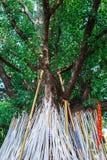 Poe-Traditionskrücken, chiangmai, Thailand Lizenzfreie Stockbilder