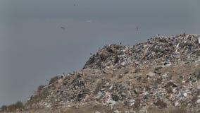 Poel, huisvuilstortplaats, giftig vernietigen, stock footage