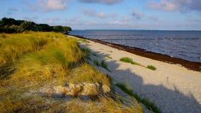 Poel-Strand am schwarzen Busch auf der Insel von Poel stock video footage