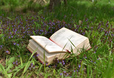 Poem book on field with purple flowers Royalty Free Stock Photo