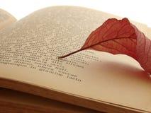 Poema antiguo Imágenes de archivo libres de regalías