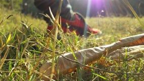 Poemaschoenen met grashd behang Stock Foto