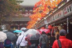 Poeple walk to Sensoji temple. TOKYO, JAPAN - NOVEMBER 15, 2015: Unidentified poeple walk through souvenir shops to access to Sensoji temple. Here is the Royalty Free Stock Images
