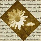 Poesia e flores ilustração do vetor