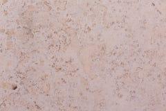 Poetiskt pittoreskt för mjuk kulör betongvägg Royaltyfria Bilder