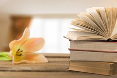 Poetry. Background reading antique beautiful blossom book royalty free stock images