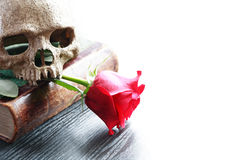 Poetry Of Death Stock Photos