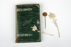 Poetry. An old book with notes,poems, a nd thoughts, of the early 1900s, Art Neauveau Royalty Free Stock Image