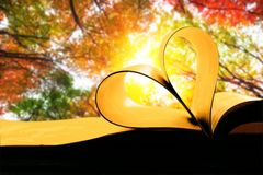 Poetry. Vintage art autumn background beams beautiful stock images