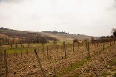 pogórzy wzgórza kształtują teren linie dwa wioski winnicy zima Obraz Royalty Free