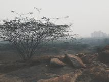 pogoda mgłowa Zdjęcie Royalty Free