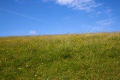 Pogodna łąka Zdjęcia Royalty Free