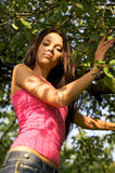 pogodna jabłczana piękna ogrodowa dziewczyna Zdjęcia Stock