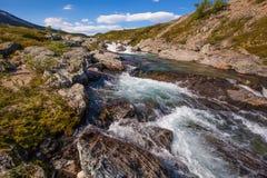Pogodna krajobrazowa Norwegia gór Dovrefjell rzeka Obrazy Stock