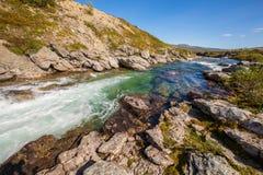 Pogodna krajobrazowa Norwegia gór Dovrefjell rzeka Zdjęcie Stock