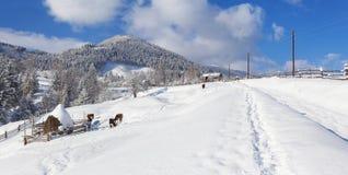 Pogodna panorama górska wioska Zdjęcia Stock