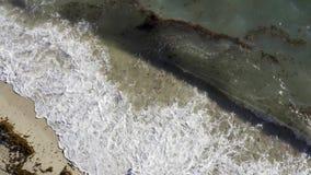 Pogodna piasek plaża z tocznymi falami w Miami w usa zbiory wideo