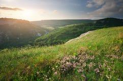 pogodna ranek góra zdjęcie royalty free