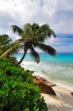 Pogodna tropikalna plaża Zdjęcia Royalty Free
