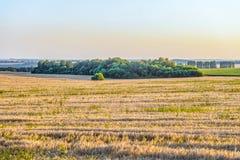 Pogodne lato krajobrazu równiny fotografia royalty free