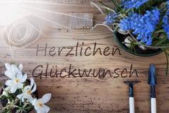 Pogodni wiosna kwiaty, Herzlichen Glueckwunsch Znaczą gratulacje Zdjęcie Stock