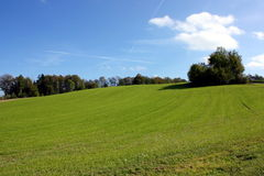 pogodny łąkowy lato Obraz Royalty Free