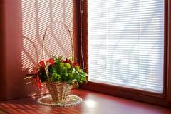 pogodny bukieta okno Fotografia Royalty Free