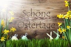 Pogodny jajko I królik, Gras, Schoene Ostertage sposobów Szczęśliwa wielkanoc ilustracji