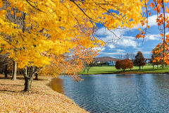 Pogodny jesień krajobrazu otaczania parka staw Zdjęcie Stock