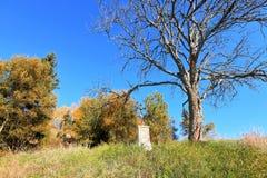 pogodny jesień ranek Obraz Royalty Free