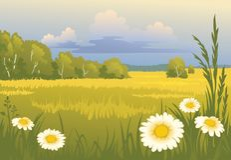 pogodny krajobrazowy lato Fotografia Stock