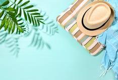 Pogodny lata pojęcia tło z silnym cieniem palmowy lea zdjęcia royalty free