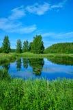 Pogodny lato krajobraz z rzek? Zieleni wzgórza i łąki Pola luksusowa zielona trawa obrazy stock
