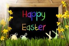Pogodny narcyz, jajko, królik, Kolorowego teksta Szczęśliwa wielkanoc Fotografia Royalty Free