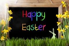 Pogodny narcyz, królik, Kolorowego teksta Szczęśliwa wielkanoc Obraz Stock