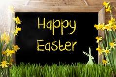 Pogodny narcyz, królik, tekst Szczęśliwa wielkanoc Obraz Royalty Free