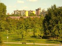Pogodny parkowy popołudnie Obrazy Royalty Free