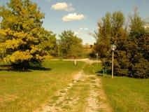 Pogodny parkowy popołudnie Zdjęcie Royalty Free