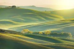 Pogodny ranku Tuscany krajobraz z pięknymi wzgórzami zdjęcie stock
