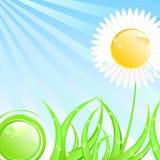 pogodny wiosna ilustracyjny lato royalty ilustracja
