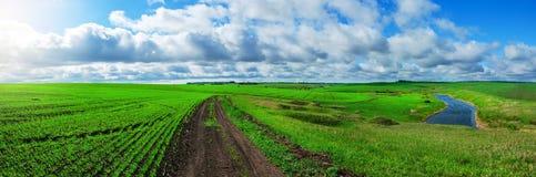 Pogodny wiosna krajobraz z zmielonym wiejskiej drogi omijaniem przez zieleni wzgórzy i poly obraz royalty free